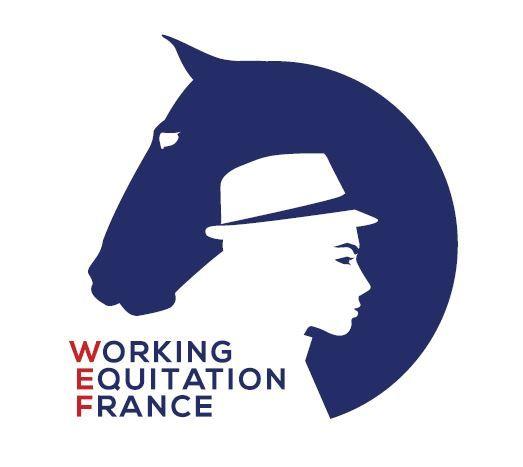 Mistrzostwa Europy w Working Equitation