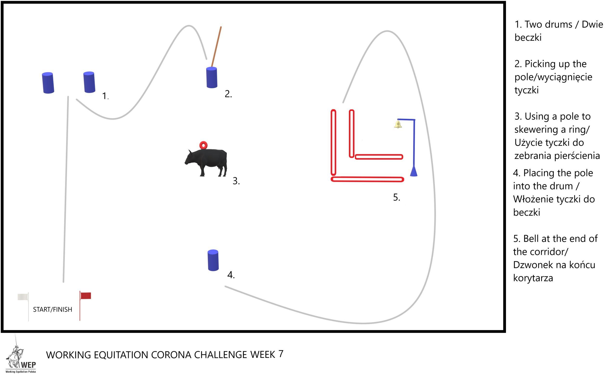 Working Equitation Corona Challenge Week 7