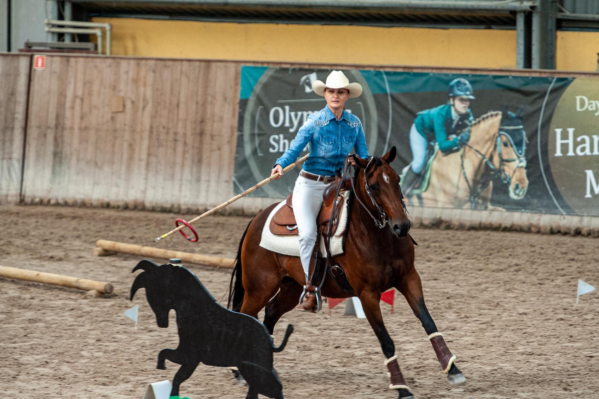 EZ Working Equitation Open