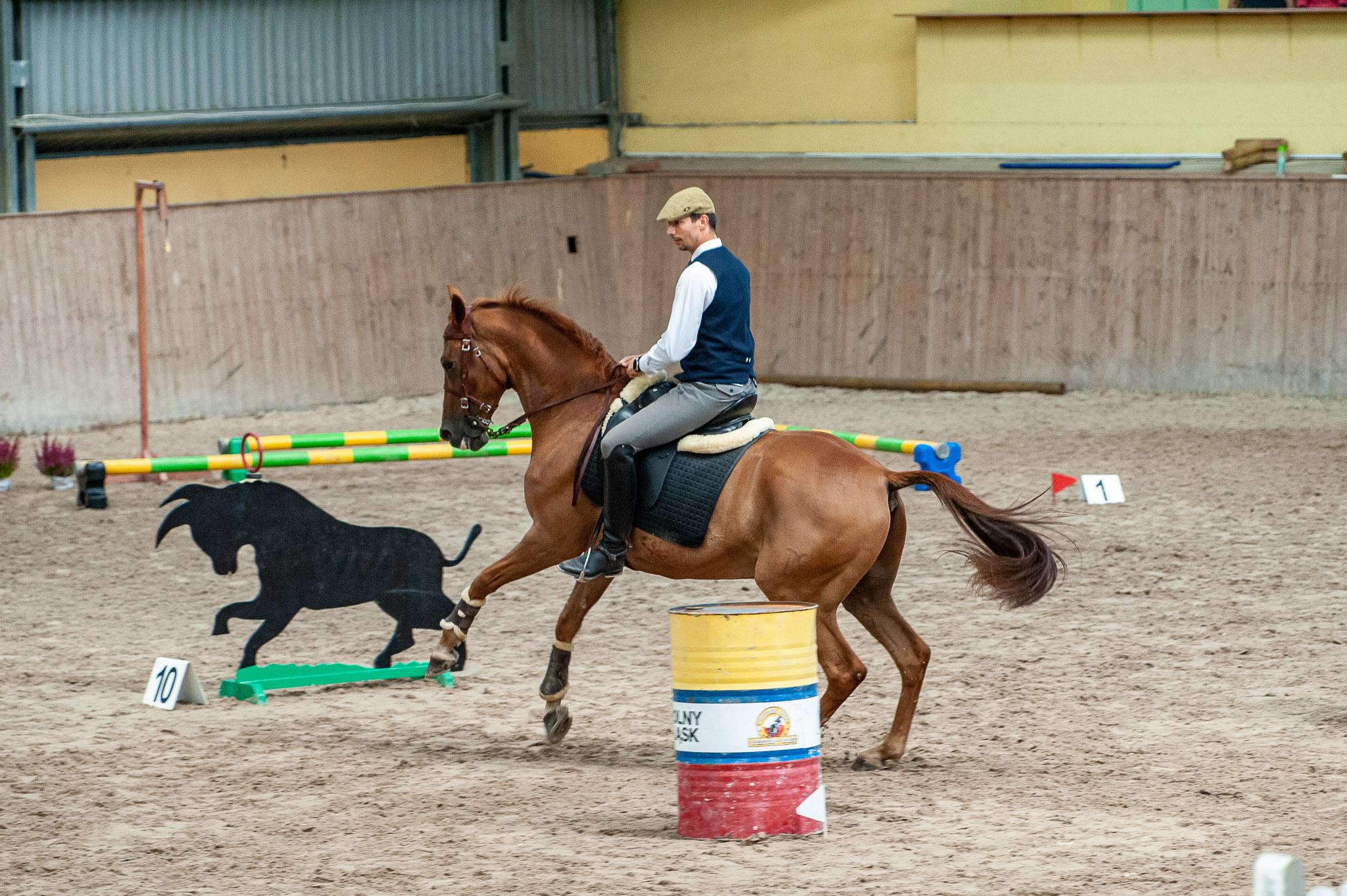 Zawody Working Equitation w WRTC Furioso