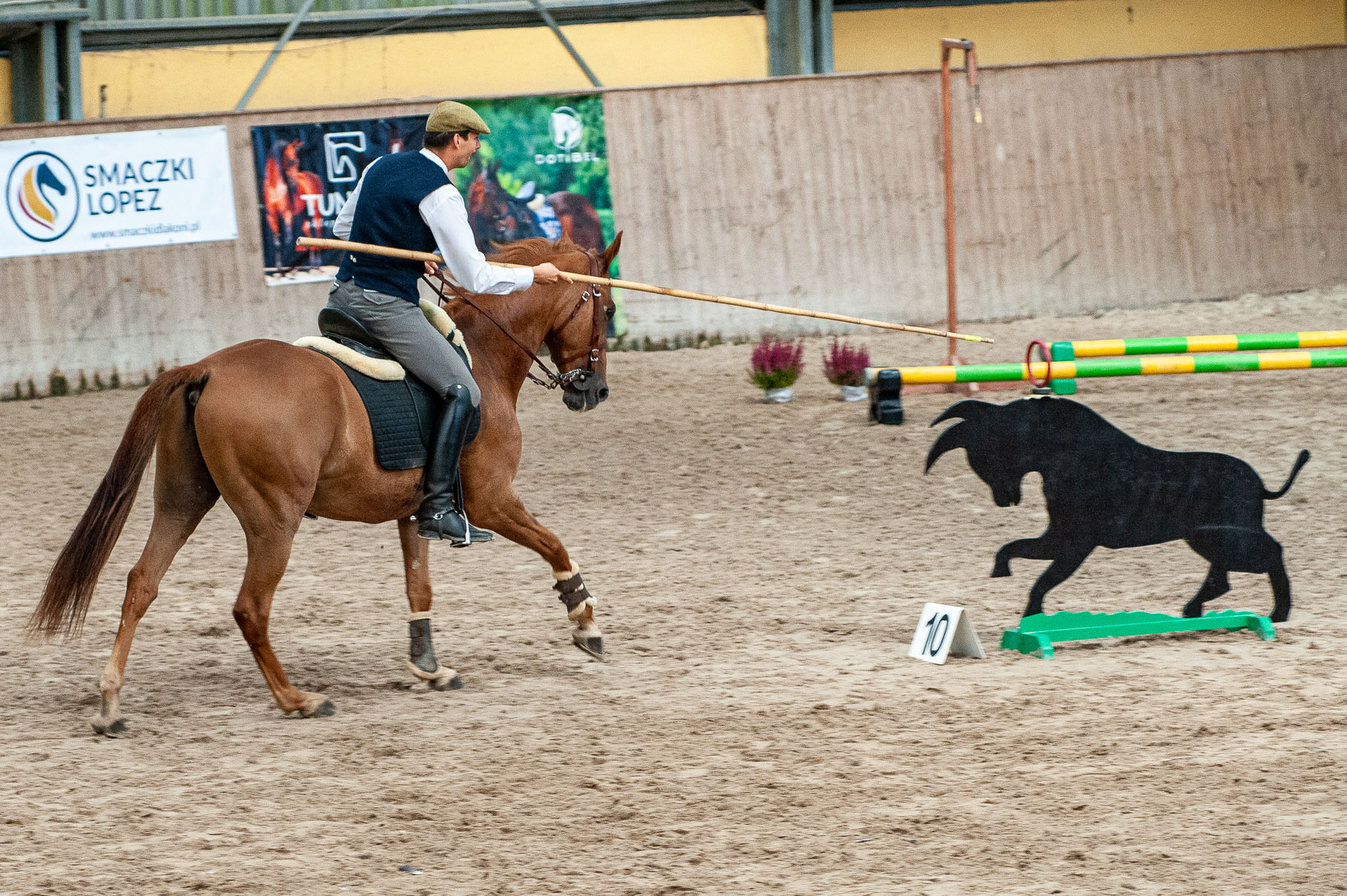II Wroclove International Working Equitation Competition